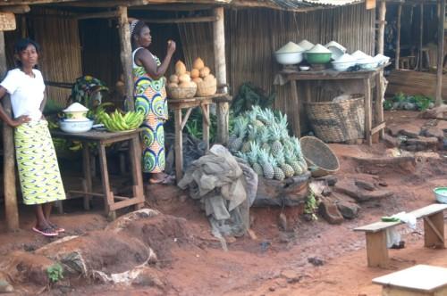 Королевство Дагомея — государство Бенин