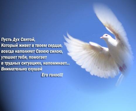 bog i ljubov 1
