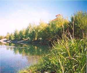 Увлекательное путешествие на плоту по реке Туба