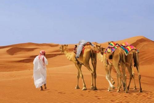 Население ОАЭ